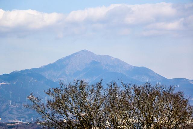 20150211-曽我丘陵-0105.jpg