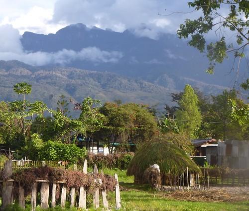 Papou13-Wamena-Ville (22)1