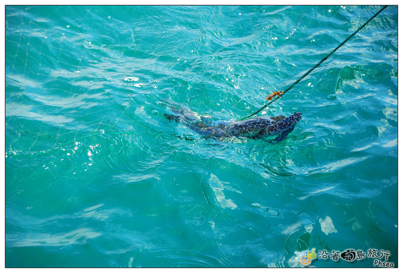 2013歐船長東海休閒漁業_06