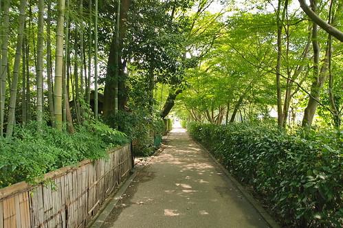 【写真】嵐山界隈