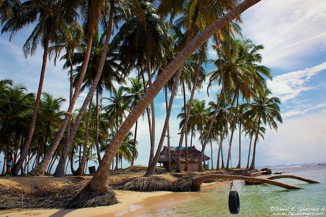 Playa y brisa