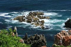 The Ocean, Cape Town
