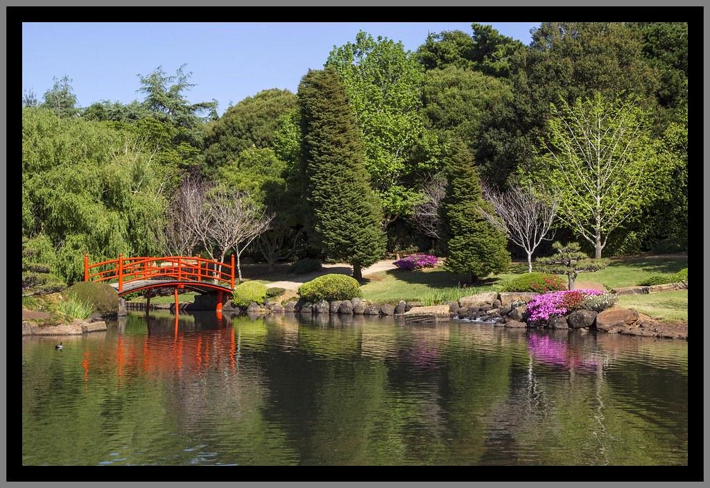 Toowoomba Japanese Gardens_1=