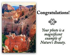 Top 25 Nature's Beauty's ☆Masterpiece Gallery☆