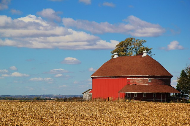 Oval Red Barn