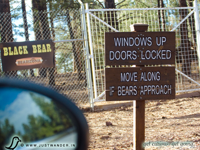 PIC: Bearizona's Black Bear warning signs for your safety
