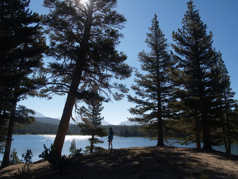 Morning light on Dog Lake, Yosemite National Park