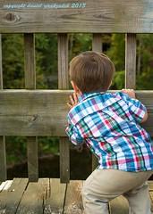 Child Peering on bridge Collinsville CT