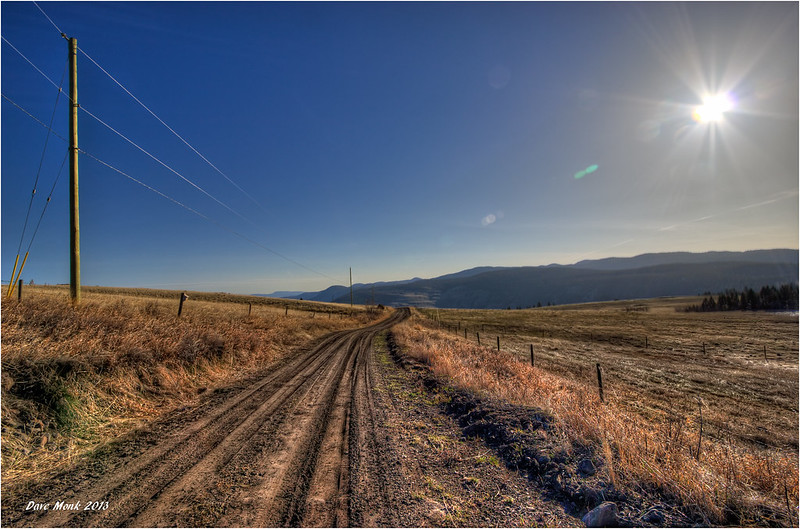 Rutted Road in the Okanagan