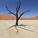 Namibia 9736 by Pianeta Gaia Viaggi