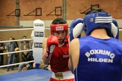 Boxring Düsseldorf und Hilden teilen sich den Boxchamp
