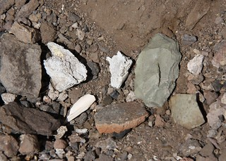 Bone Fragments, Pottery Shard, Lithics