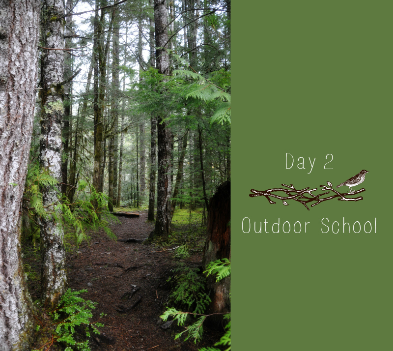 Outdoor School Day 2