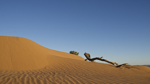 morning blue sky sahara sunrise nikon desert dunes 28mm morocco nikkor f18 hamid d600