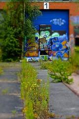 Graffiti at lost places