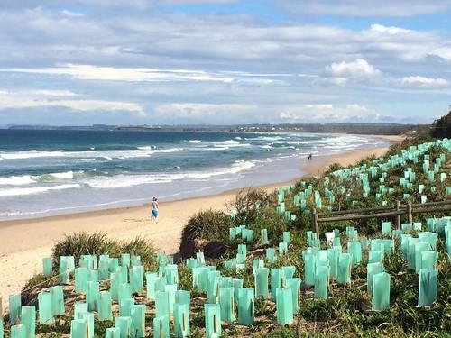 Old Bar Beach #oldbar #beach #newsouthwales #roadtrip #travelling #longweekend #waves #sand