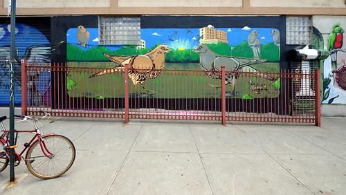 Sidewalk Pigeons