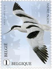 10 Le nouveau Zwin timbre d