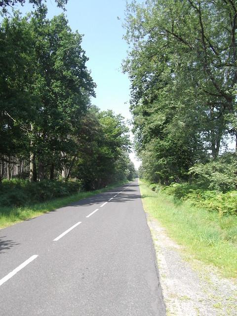 La campagne et ses routes ombragées