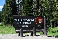 Yellowstone-Teton Area