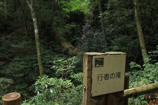 20130910岩湧山0017