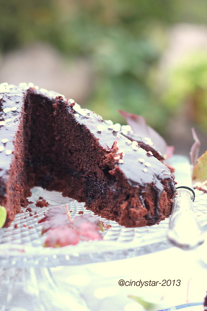torta nera-finta sacher-black cake-fake sacher
