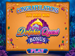 Dolphin Quest Bonus Game