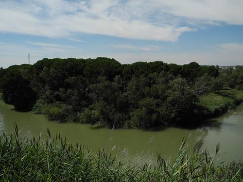 Tudela de Duero. Meandro del Duero