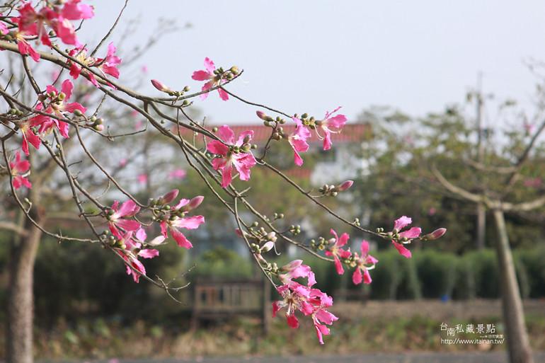 台南私藏景點--台灣詩路