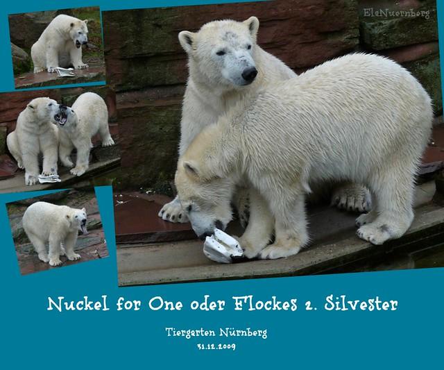 Nuckel for One oder Flockes 2. Silvester