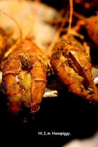 鼎讚活蝦料理(37)