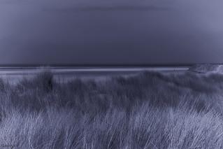 Dune_
