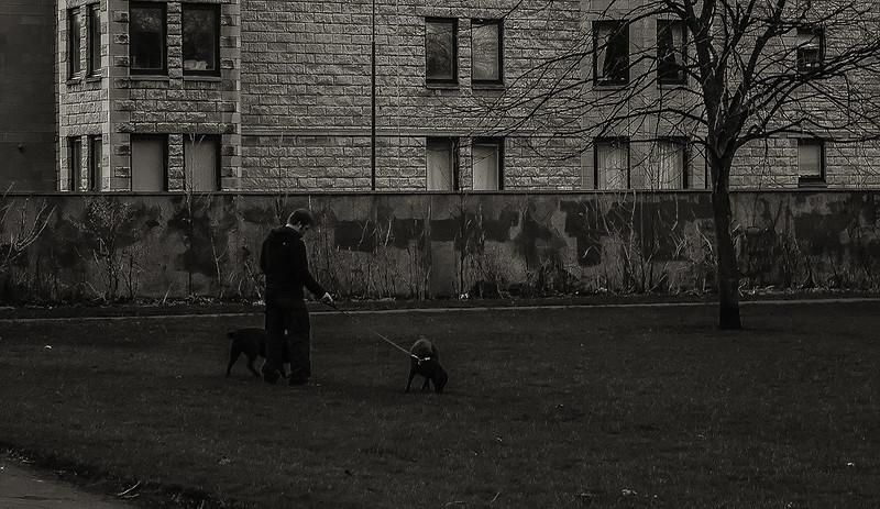 streets_16