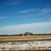 Texas Road Trip Jan 2014 3
