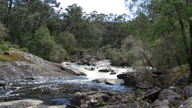 Day 28: Donnelly River