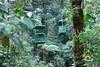 hotel_aerial_tram_lodge_costa_rica_picture_24 (Copy)