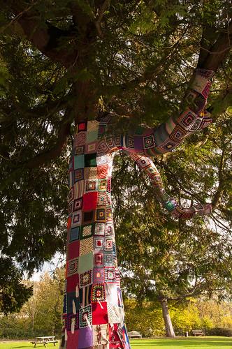 The Close-Knit Community (kasiainwales)
