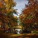Autumn pond by Falcdragon
