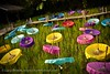 The Colors of Traditional Thai Parasols: An Outdoor Exhibition