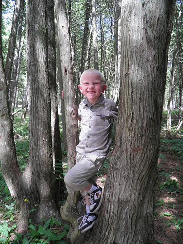 Boy in the trees