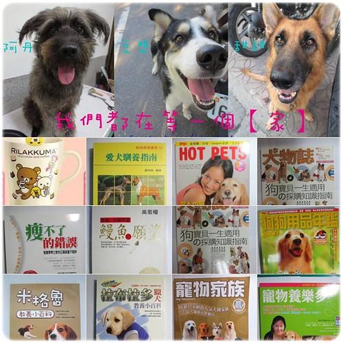 「義賣和認養」台南籌狼犬甜甜、混哈士奇豆漿、混梗阿丹、的中途住宿美容醫療生活費,也歡迎由直接認養他們,謝謝您~20130731