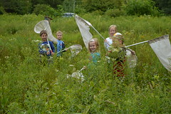 Audubon Camp