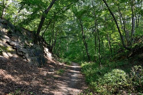 Van Cortlandt Park - Bridle Path