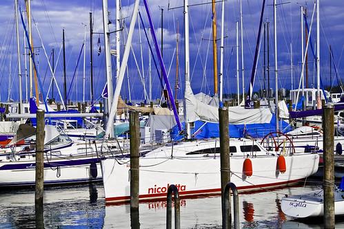 The Sailorship