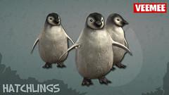Hatchlings_Batch01_Penguins_2013-09-25_684x384