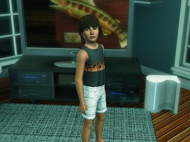 Sims 3 celebrity outside bridgeport