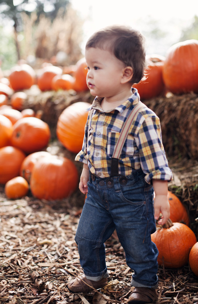 cute & little blog | dylan pumpkin village dallas arboretum 2013