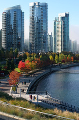 2. Coal Harbour and Fog in Autumn