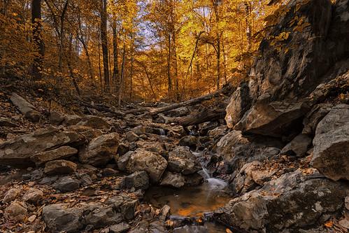 autumn fall leaves rocks maryland hike foliage riverbed cascade elkridge cascadetrail patapscostatepark