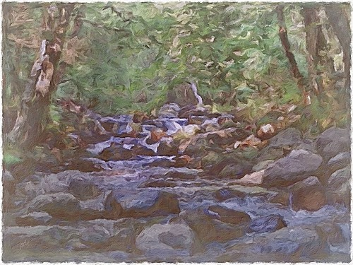 Smoky Mountain Stream P